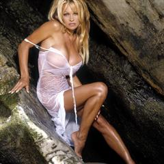 Pamela Anderson wifecv blonde celebrity model celeb