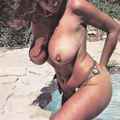 Christy Canyon Uschi Digard vintage boobs busty hairy retro